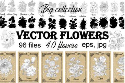 Big set of vector hand drawn flowers
