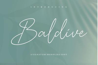 Baldive Signature Monoline Font