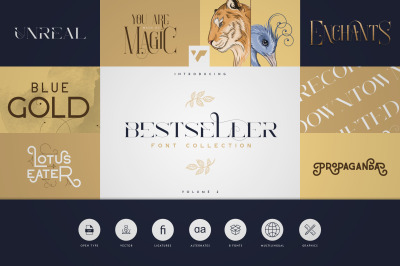 Bestseller Font Collection Vol.02