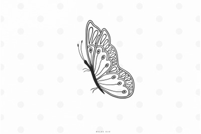 Butterfly svg cut file