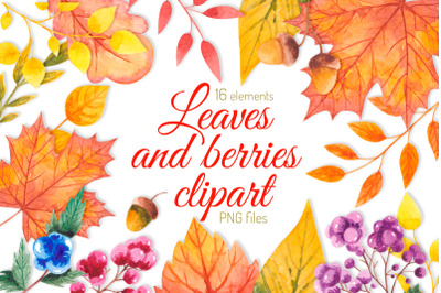 Fall clipart Watercolor autumn clipart Leaves and berries Thanksgiving