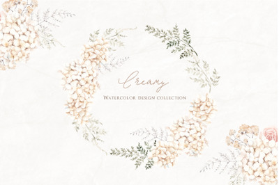Creamy. Watercolor floral collection