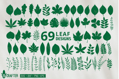 leaf and leaf branch svg bundle