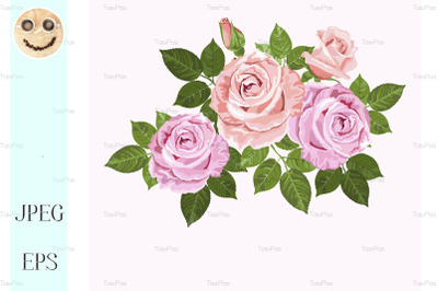 Pink and beige vector roses with green leaves.