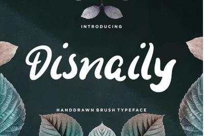 Disnaily Handdrawn Brush