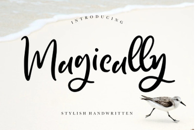 Magically Stylish Handwritten