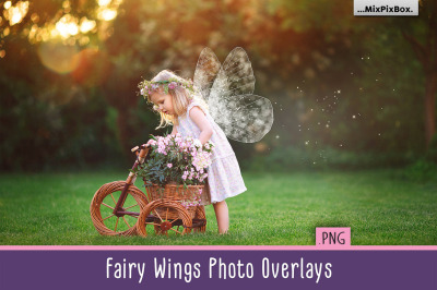 Fairy Wings Overlays