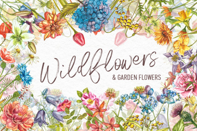 Wildflowers & Gardenflowers clipart