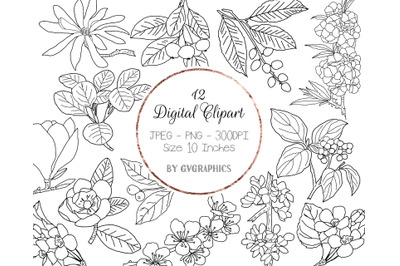 12 Hand Drawn Flowers, Branches, Leaves and Berries Digital Clipart