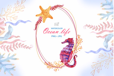 Watercolor ocean life