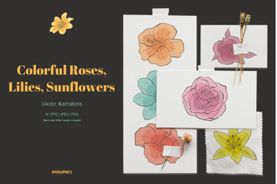 Colorful Roses, Lilies and Sunflowers Vector Illustrations