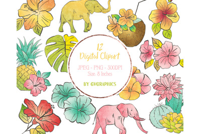 12 Summer Tropical Digital Clipart with flowers and elephants