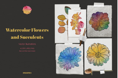 Watercolor Flowers and Succulents Vector Illustrations