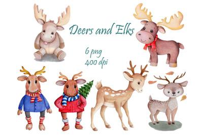 Deers and Elks