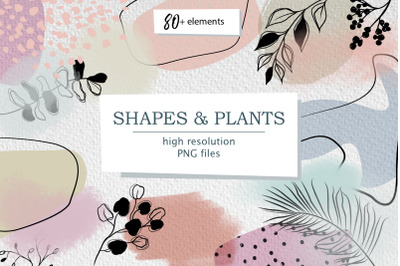 Abstract shapes & plants