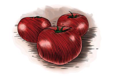 Woodcut Tomatoes