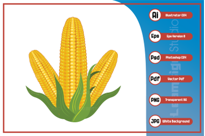 Illustration realistic corn design vector