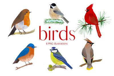 Birds Illustration Clip art, PNG