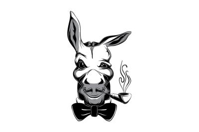 Funny Snobbish Donkey