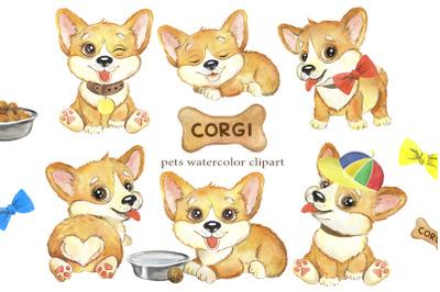 Puppies CORGI watercolor clipart. Pets clip art funny dogs animals