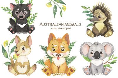 Australian animals clipart. Watercolor clipart, tropical little animal