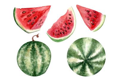 watercolor fruit watermelon clipart