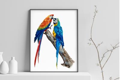 Parrots - Watercolor Print and Clip Art