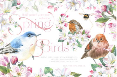 Watercolor Spring Birds