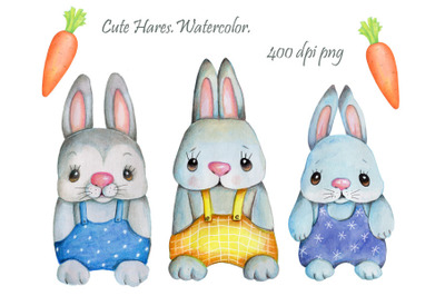 Cute Hares with carrot. Watercolor.