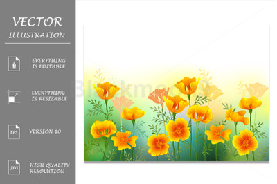 Background with California Poppy