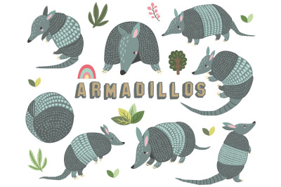 Cute Armadillos Collections Set