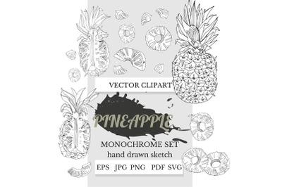 pineapple clipart, pineapple art, pineapple svg