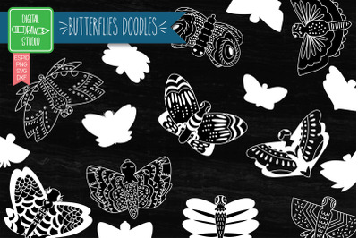 Hand Drawn Butterflies White Clip art | Moth Insect | Bug Illustration