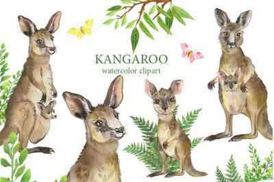 Kangaroo watercolor clipart. Family Kangaroo.Australian animal clipart
