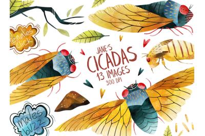 Watercolor Cicadas Clipart Set
