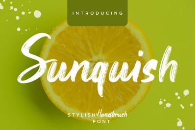 Sunquish Stylish Handbrush