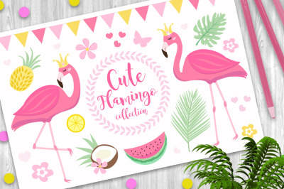 Cute princess pink flamingo set