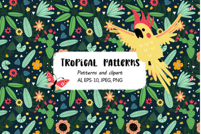 Tropical parrots set
