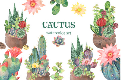 Watercolor Cactus Clipart. Watercolor flower clipart. Tropical exotic