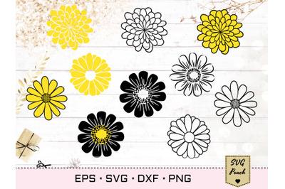 Daisy Flowers SVG