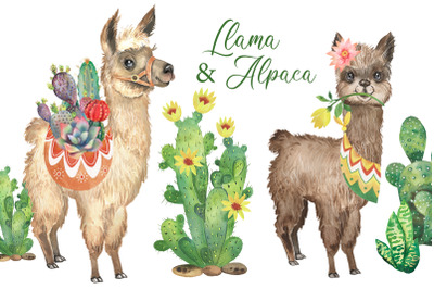Llama clipart Alpaca watercolor clipart, cute animals, kids clipart