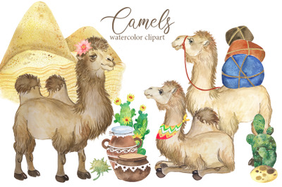 Camel watercolor clipart. Desert animals, flowering cacti, camel
