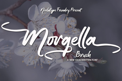 Morgella Brush