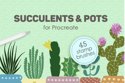 Succulents and pots stamp brushes for Procreate