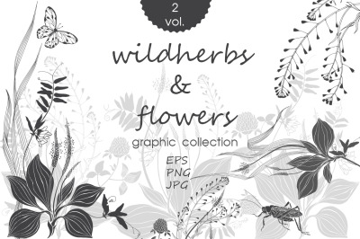 Wildherbs and flowers. Compositions.