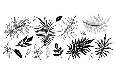 Plant set tropical. Black and white color
