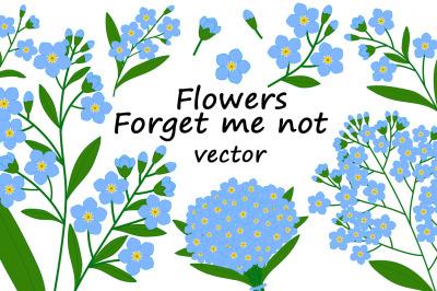 Set of forget me not flowers vector botanical illustration