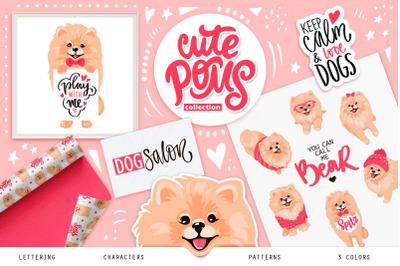 Pomeranian spitz, cute dogs.