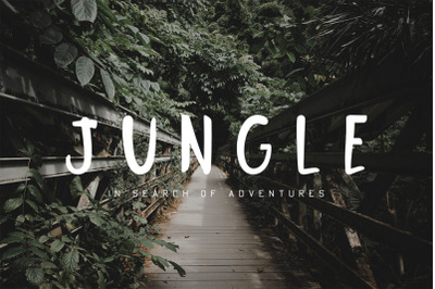 Jungle Display Font
