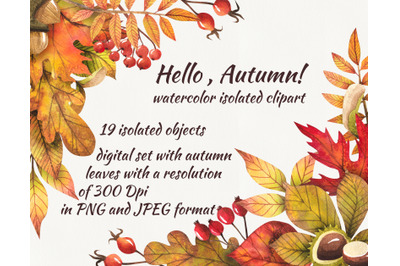 Autumn leaves, set of autumn leaves, digital clipart